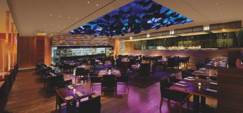 ARIA - AMERICAN FISH Interior