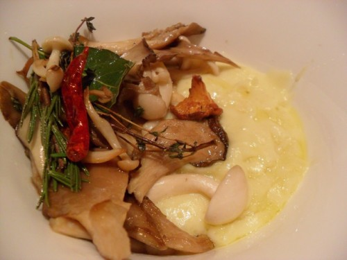 seasonal mushrooms with cheese potato purée
