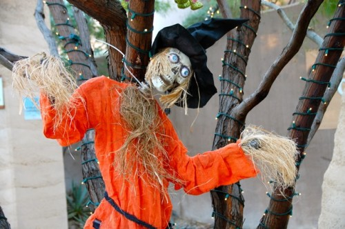 Scarecrow at Springs Preserve